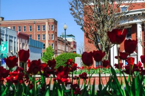 DowntownBuckhannon1